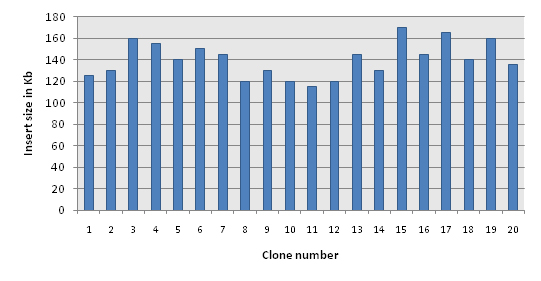 Distribution of clones